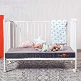 Baby Crib Mattress Review and Comparison