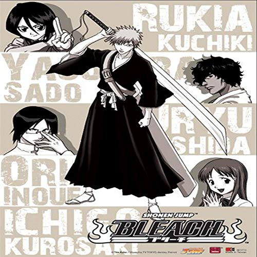 Great Eastern Entertainment Bleach Ichigo, orihimi, Sado, Uryu, Rukia, Kisuke Wall Scroll, 33von Blumenkasten