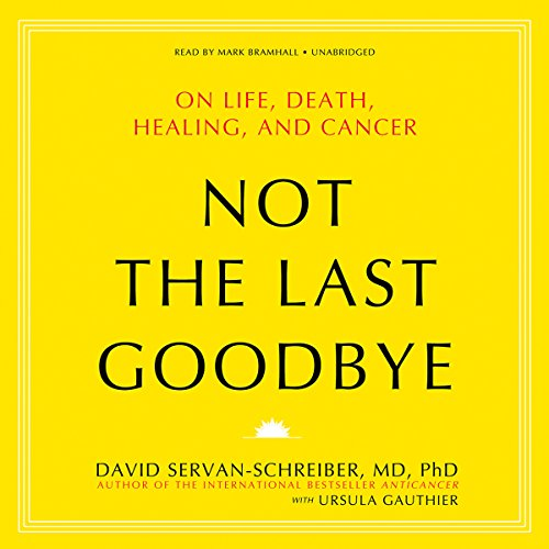 Not the Last Goodbye audiobook cover art