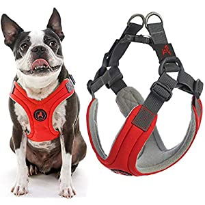 Gooby Dog Harness – Red, Medium – Escape Free Memory Foam Step-in Small Dog Harness – Perfect on The Go Four-Point Adjustable – No Pull Harness for Small Dogs or Cat Harness
