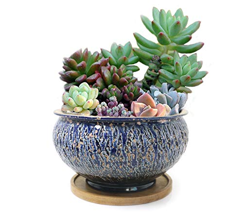 Color Glazed Vintage Round Ceramic Succulent Plant Pot with Drainage Hole and Tray, Succulent Holder, Bonsai, Artificial Topiary Potted Container,Blue-Black