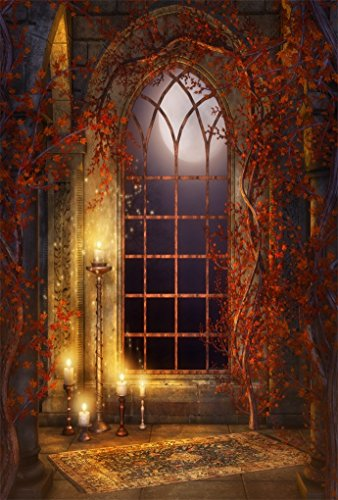 AOFOTO 6x8ft Vintage Gothic Room Background Moonlight Arched Window Photography Backdrop Interior Candles Vines Girl Boy Child Kid Lovers Portrait Halloween Photo Studio Props Video Drape Wallpaper