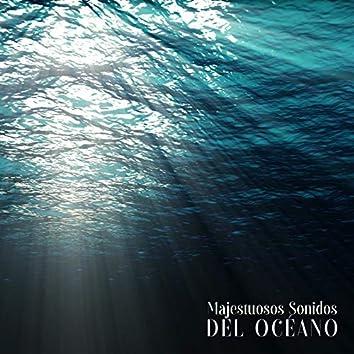Majestuosos Sonidos del Océano – 1 Hora de Recolección de Sonidos de Agua
