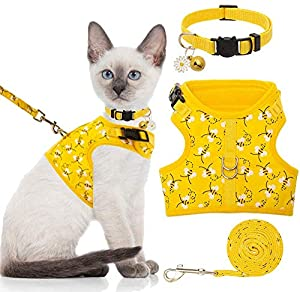BINGPET Cat Harness with Leash and Collar for Walking - Escape Proof with 59 Inches Leash - Adjustable Soft Vest Harnesses for Medium Large Cats
