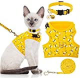 Best cat harness - BINGPET Cat Harness with Leash and Collar Review