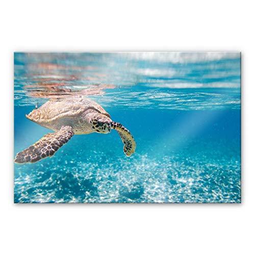 Acrylglasbild Schildkröte auf Reisen Meer Ozean schwimmen Sonne Meerestier Wasser Wall-Art - 60x40cm