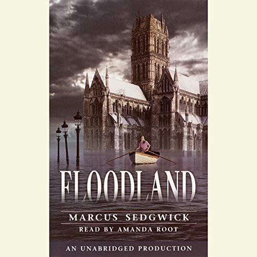 Floodland audiobook cover art