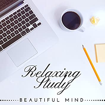 Relaxing Study: Homework Study Music, Top Background Music for Learning for Concentration & Improving Memory, Beautiful Mind