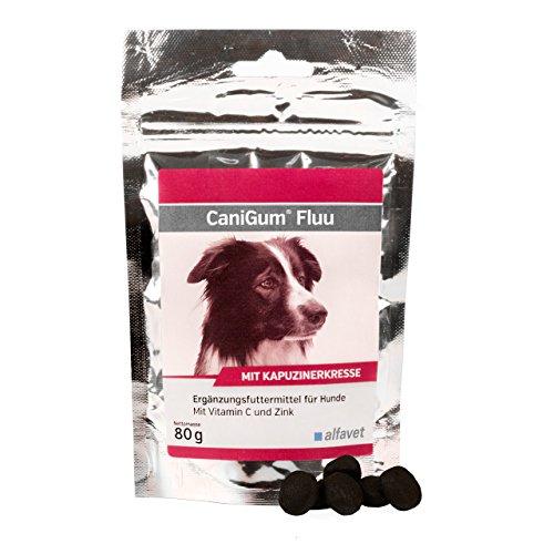 CaniGum Fluu/  für Hunde, Vitamin C und Zink /Kapuzinerkresse ist reich an Vitamin C/Vitamin C und Zink unterstützen die Immunabwehr Mit B-Vitaminen