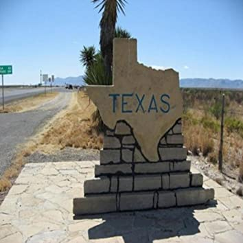 Driving Through Texas With Willie Nelson