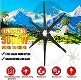 XIAOXIAO 5000W 12V / 24V / 48V Wind Turbine, 6 Blade Wind Turbine Horizontal Household Power Windmill Energy Turbine Charging, Black,24V