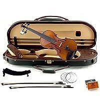High Quality Sound Artist 500 Series 4/4 Violin バイオリン Sky社【並行輸入】