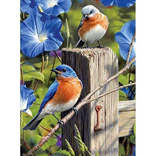 KGCFUNYP DIY 5D Kit de Pintura de Diamante Gorrión pájaro azul flor Pintura Diamante Punto de Cruz Diamante Decoración de Pared del Hogar 30 * 40cm