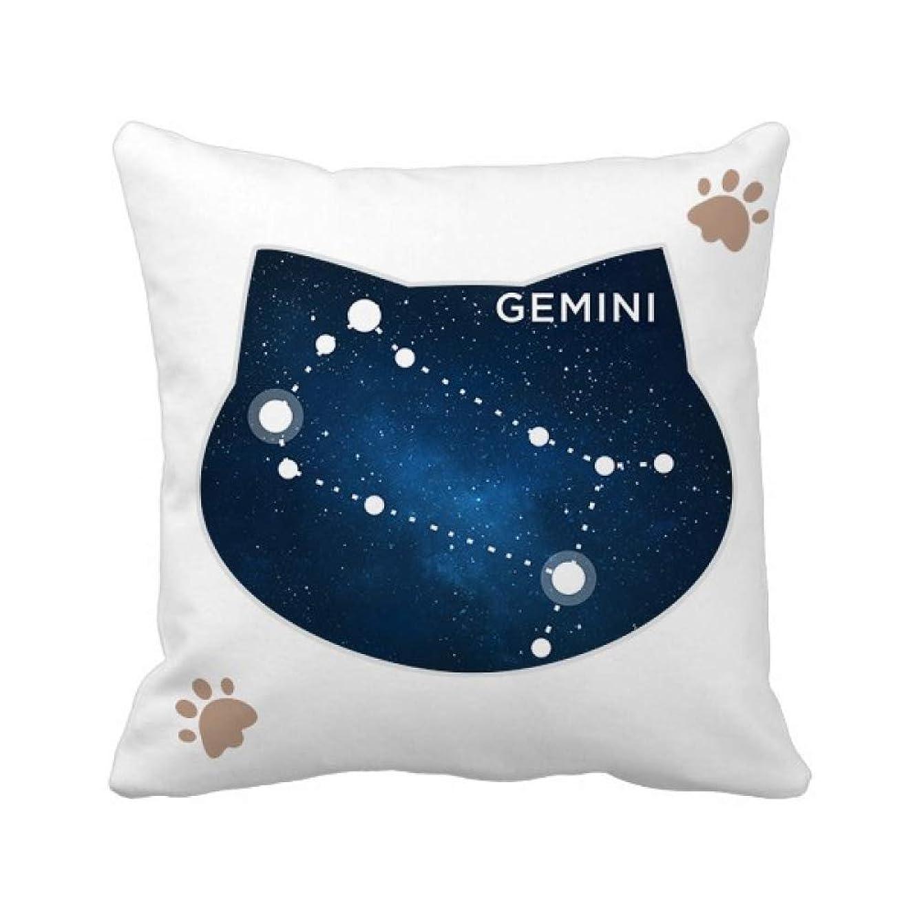 数学者スラムデコレーション双子座の星座の十二宮のサイン 枕カバーを放り投げる猫広場 50cm x 50cm