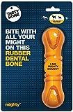 TASTYBONE Mighty Dental Bone Dog Toy