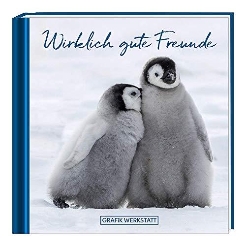 Wirklich gute Freunde: Minibuch