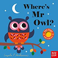 Where's Mr Owl? (Felt Flaps)