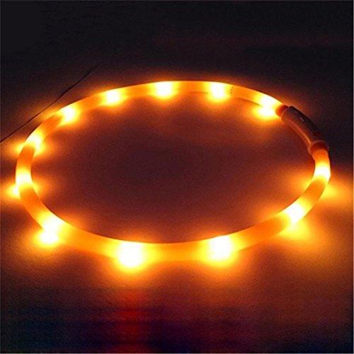 Bodhi2000® LED-Hundehalsband, wiederaufladbar, blinkend, LED-Halsband für Hunde und Katzen, Sicherheitshalsband