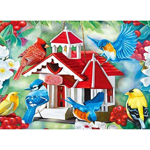 wwdfdd Diamond Painting DIY volledig kristallen strass borduurwerk vogelhuisje kruissteek-mozaïek knutselen volwassenen voor decoratie thuis (30x40cm)