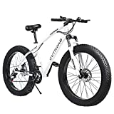 PanAme 21 Speed Fat Tire Adult Mountain Bike, 26-inch Wheel Bicycle, 4-inch Wide Tire, Steel Frame, Front and Rear Brakes (Black and White)