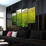 KOPASD Impresión HD Pintura 4 Partes Campos de Cannabis Mural no Tejido Impresión Moderno Ilustraciones,para CAS Decoración Innovador Regalo(Sin Marco)