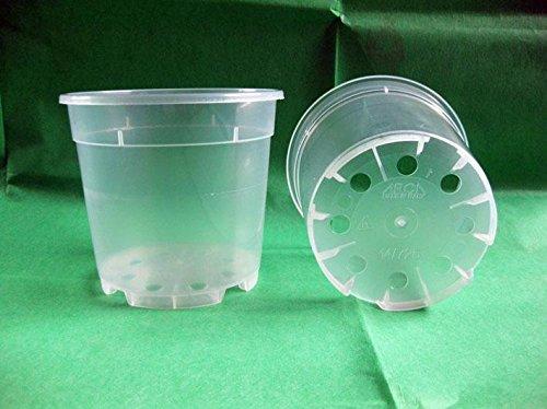 Geosism & Nature Vase Transparent pour orchidées 14x12,5 cm (10 pièces), Compagnie Arca