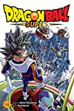 Dragon Ball Super, Vol. 14 (Volume 14)