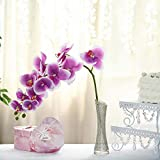 """Tableclothsfactory 2PCS 40"""" Tall White/Purple Silk Orchid Stems Artificial Flower Stem Real Touch Flower for Wedding Decorations"""