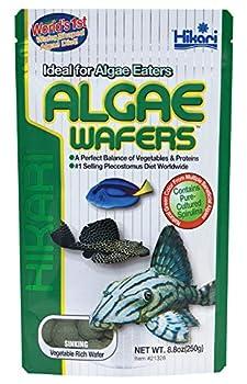 Best algae wafers Reviews