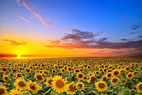 Super Power® 1000 Piezas Girasoles Mar de Flores Puesta de Sol Paisaje Adultos Juguetes de Rompecabezas de Madera Puzzle Marco de Fotos Familiar Regalos
