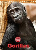 Gorillas (Tischkalender 2022 DIN A5 hoch): Die sanften Riesen Afrikas (Planer, 14 Seiten )
