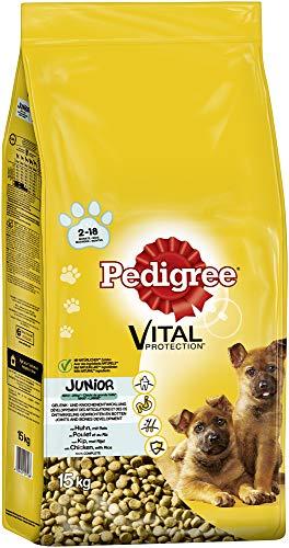 Pedigree Hundefutter Trockenfutter Junior für große Hunde >25kg mit Huhn und Reis, 1 Beutel (1 x 15kg)