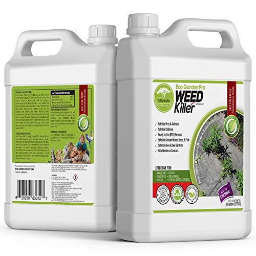 ECO Garden PRO - Organic Vinegar Weed Killer | Kid Safe Pet | Clover Killer for Lawns | Moss Killer | Green Grass & Poison Ivy Killer | Spray Ready Glyphosate Free Herbicide (1 Gallon)
