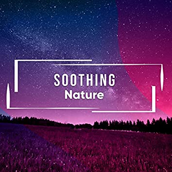 Soothing Nature, Vol. 9
