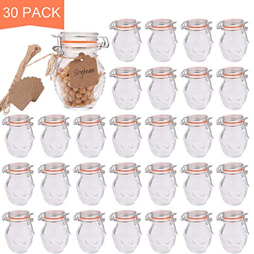 Encheng Small Spice Jars