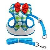 para Perros Chaleco con Correa Malla Perros pequeños Gatos Tuxedo Chalecos Walking Leash Set para Chihuahua Yorkie-Blue_M