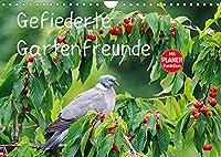 Gefiederte Gartenfreunde (Wandkalender 2022 DIN A4 quer): Farbige Fotografien von heimischen Voegeln (Geburtstagskalender, 14 Seiten )