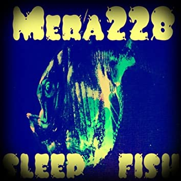 Sleep Fish