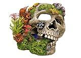 Nobby Calavera con Plantas Acuario Adornos, 19,5x 16x 14cm