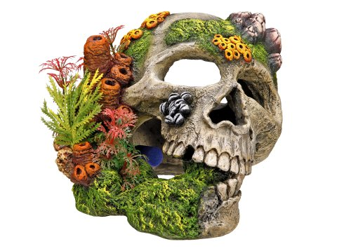 Nobby schedel met planten Aquarium ornamenten, 19,5 x 16 x 14 cm