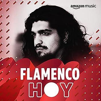 Flamenco hoy