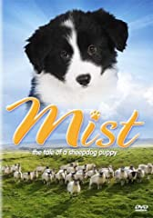 MIST: THE TALE OF A SHEEPDOG PUPPY (DVD MOVIE)