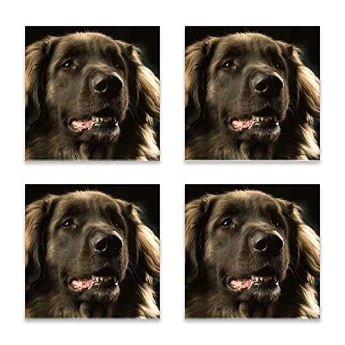 Reebos Juego de 4 posavasos para bebidas, diseño de perro Leonberger bozal oscuro cuadrado de cerámica, base de corcho, alfombrilla de protección para tazas y tazas, oficina, cocina
