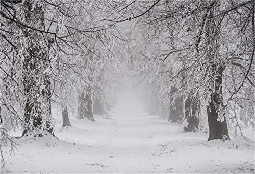 EdCott 10x8ft Invierno Nevado Árboles Fondo Naturaleza Paisaje nevado...