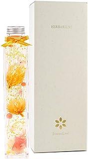 EternalLeaf ハーバリウム フラワー ピンキーオレンジ 角 瓶 ギフトボックス付 花 おしゃれ かわいい ギフト プレゼント