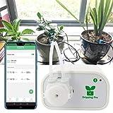 Kit automatico irrigazione a goccia, sistema di irrigazione fai da te, controllo Bluetooth Pompa acqua intelligente adatta per 8 piante in vaso,USPlug