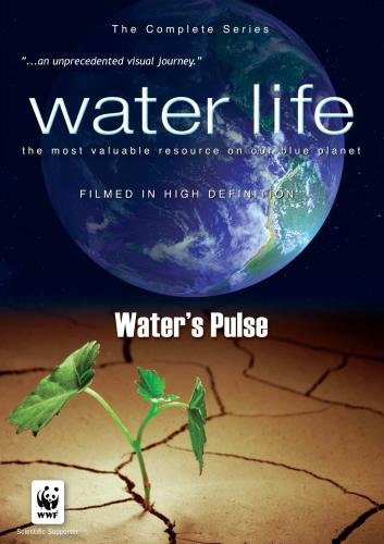Water Life: Water's Pulse