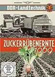 DDR Zuckerrübenernte 1969