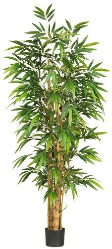 Nearly Natural 5257 Bauchnabel-Seidenbaum, Bambus, 1,8 m, grün