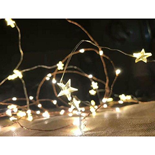 LEDMOMO Luces de cadena, 10 pies 30LED con pilas Starry Fairy Pumpkin String luces para San Valentino dormitorio, jardín, fiesta (luz blanca cálida)